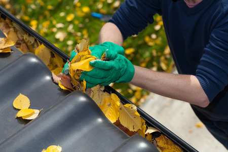 Preparing Your Gutters for Summer